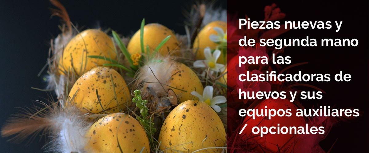 Profesionales del Mantenimiento de maquinaria para clasificación de huevos