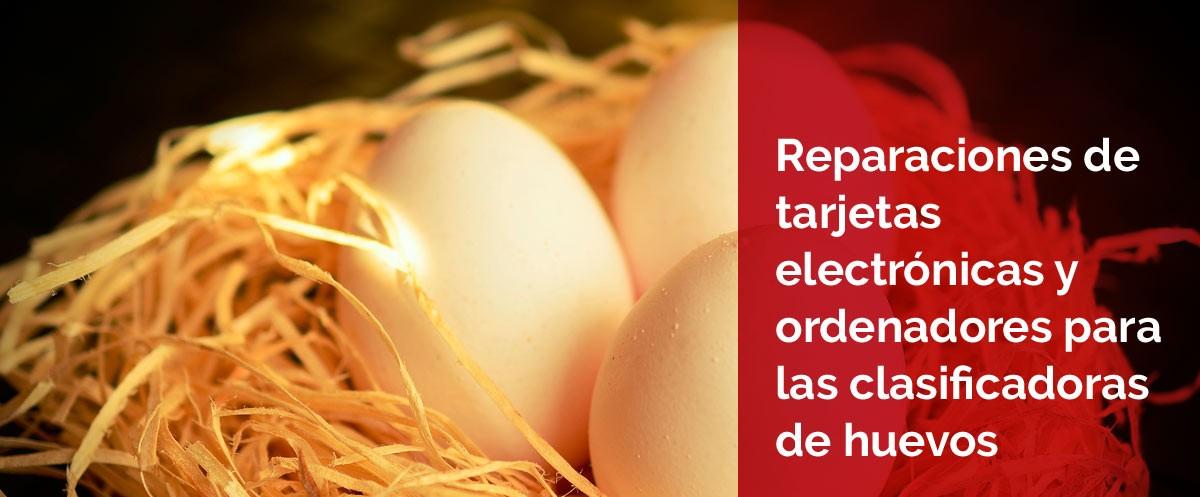 Piezas para clasificadoras de huevos